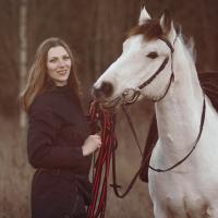 Верховая езда для всех DieoHorse в Приозерском районе